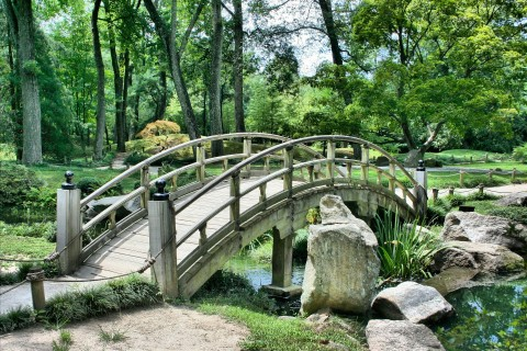 Japanese Bridge Zen