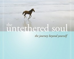 The-Untethered-Soul-260x207.jpg