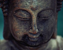 science_buddhism_agree_there_is_no_you-260x207.jpg
