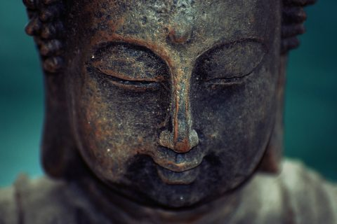 Science and Buddhism agree there is no you